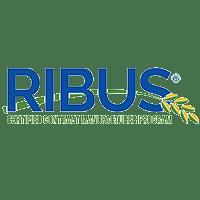 Ribus Certification
